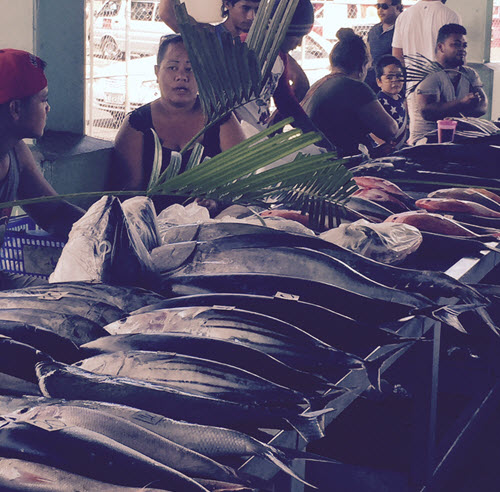 Fish Market in Apia, Samoa